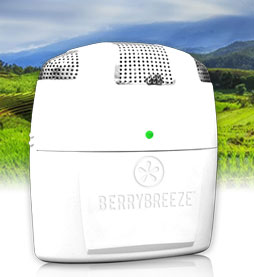 Berry Breeze Refrigerator  Freshener