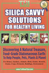 Silica-Savvy Solutions for Healthy Living